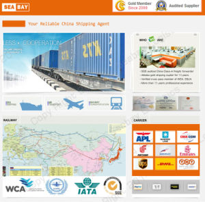 Competitive Sea Freight From China to to Oman pictures & photos