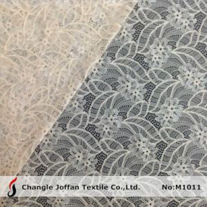 Fashion Raschel Elastic Lace Fabric (M1011) pictures & photos