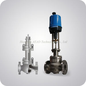 Electric Single Seat Control Valve pictures & photos
