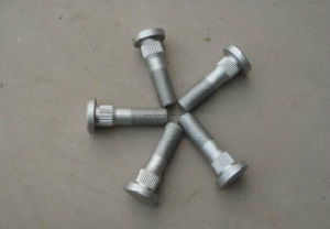 High Strength Bolts with Round Head pictures & photos