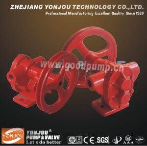 Bp Light Belt Pully Gear Pump pictures & photos