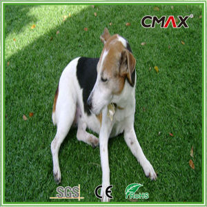 Pet Grass Best Artificial Grass for Dogs pictures & photos