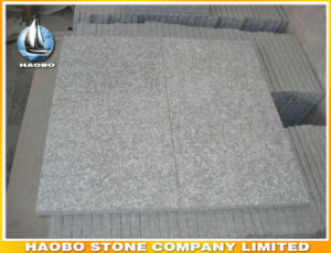 China Bainbrook Brown Granite Tiles G664 pictures & photos