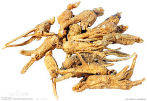 Factory Supply Directly 100% Natural American Ginseng P. E pictures & photos