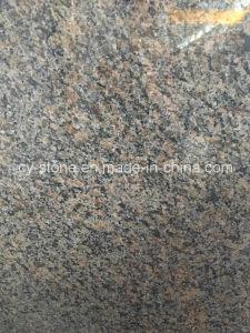 Caledonia Granite for Countertop/Vanity Top/Bench Top/Flooring/Wall Tile pictures & photos