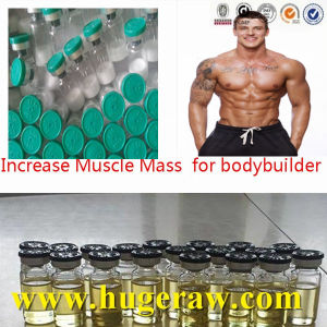 Muscle Buidling Anabolic Steroid Hormone Testosterone Sustanon 250 Steroid Powder pictures & photos
