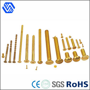 Different Kind Bolt All Kinds of Custom Thread Brass Bolts pictures & photos
