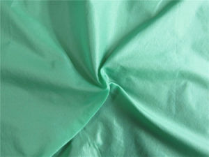 20d Nylon Taffeta Fabric for Down Coat (XSN002) pictures & photos