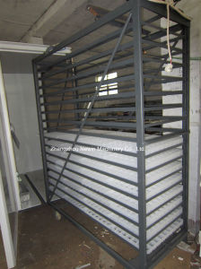 Automatic Chicken Egg Incubator for Sale pictures & photos