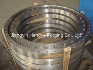 Hot Forged Equipment Flange of Material A105