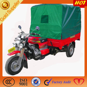 Chinese Supplier Motorized Canopy Tricycle pictures & photos