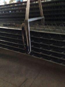Steel Bar Truss Floor Deck, Export Marshall Islands Steel Reinforced Truss Deck / Steel Bar Truss Decking Sheet pictures & photos