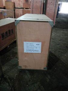 Stainless Steel Oil Gear Pump / Diesel Pump pictures & photos