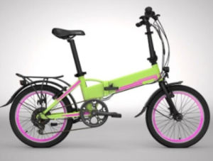 New Arrival Folding Electric Bicycle with 250W Motor pictures & photos