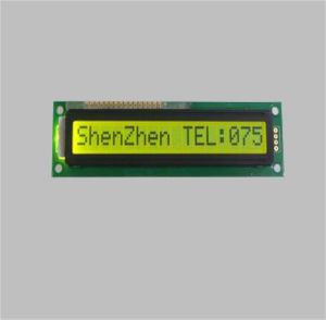 16X1 Character LCD Module Display with Yellow Green Background pictures & photos