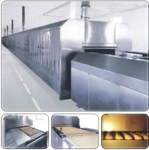 Far Infrared Tunnel Electric Oven/ Equipment/ Machinery pictures & photos