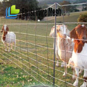 47′′ Farm Use Galvanized Wire Fence pictures & photos