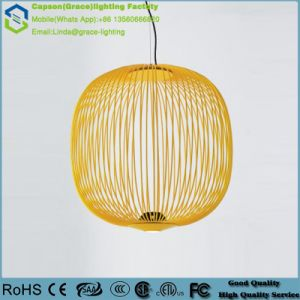 Modern Decoration Iron LED Pendant Light Gd-5062-1-530 pictures & photos