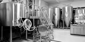 Stainless Steel Conical Beer Fermenter Tank Brewery System pictures & photos