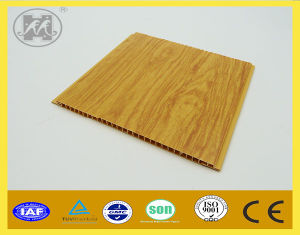 PVC Hot Stamping PVC Panel Pve Wall Panel PVC Ceiling pictures & photos