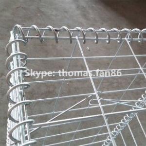 Galvanized Wire Mesh Welded Gabion / Gabion Basket / Gabion Box pictures & photos