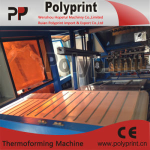 PP Water Cup Thermoforming Machine (PPTF-70T) pictures & photos