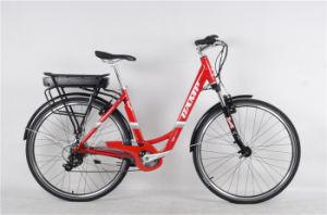 "CTE 1.0, Alloy, E-Bike, 28"" pictures & photos"