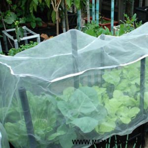 Greenhouse Anti Insect Netting/Agriculture Netting for Vegetable Gardens pictures & photos