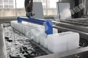 Focusun Manufacturing High Quality Brine System Block Ice Machine pictures & photos