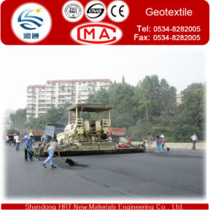 Fiberglass Geogrid for Slope Reinforcement pictures & photos