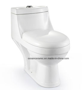 012 Hot Sale Washdown One Piece Toilet, Sanitary Ware pictures & photos