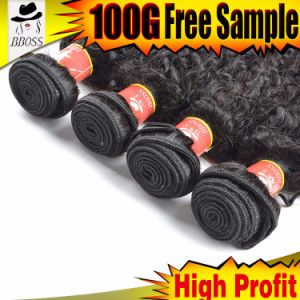 Can Be Dyed Grade 9A Brazilian Virgin Hair Extension pictures & photos