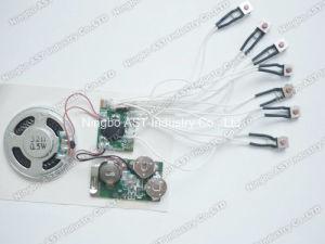 Multi Message Sound Module, Audio Chip (S-3017) pictures & photos