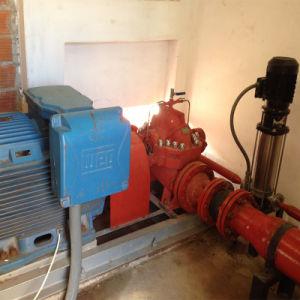 UL/FM Fire Pump (NFPA20 standard pump) pictures & photos