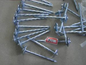 Umbrella Head Roofing Nails From Manufacture in China pictures & photos