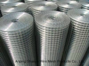 Galvanized Welded Wire Mesh-100′ in Roll pictures & photos