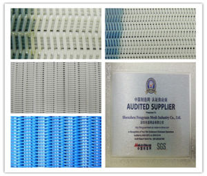 Polyester Filter Fabrics for Press Filter- Factory Outlet pictures & photos
