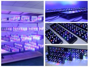 2016 Soft Corals Programmable Coral Reef LED Aquarium Light pictures & photos