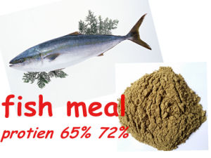 Fish Meal for Fish Protein 65% 72% pictures & photos