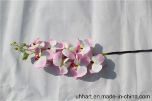 2017 Trending Prouct High Quality Orchid Flower Artificial Silk Flowers Moth Orchid pictures & photos