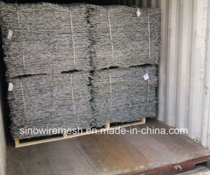 Galvanized Hexagonal Wire Netting by Made in China pictures & photos