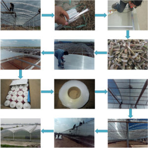 Polycarbonate 100% Raw Materia Frosted Sheet with ISO Certificated pictures & photos