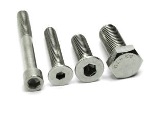 Special Stainless Steel Screws Making pictures & photos