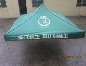 3X3 Quick Set up Folding Tent/Canopy pictures & photos