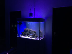 60W Epistar Dimmable Aquarium LED Light for Marine Tank pictures & photos