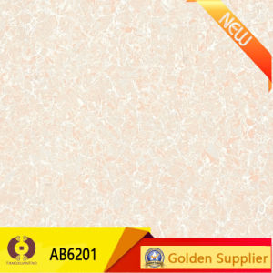 Double Loading Pilates Design 600X600 Polished Tiles Flooring (AB6240) pictures & photos