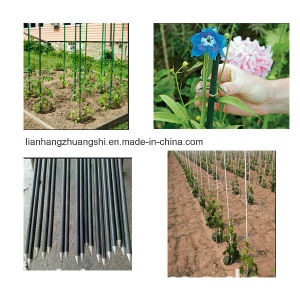 High Strength Fiberglass Rod Plant Stake Fiberglass Pole pictures & photos