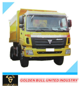 Truck Parts for Foton Auman Truck pictures & photos
