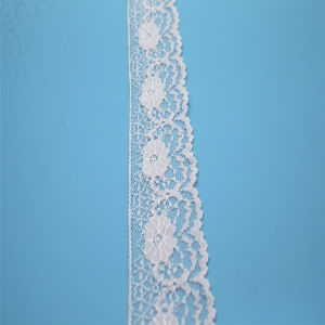 Latest Design Chemical Nylon Lace for Bra pictures & photos