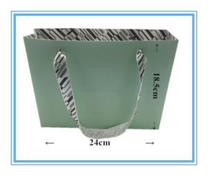 Professional Paper Handle Bag with Custom Artwork pictures & photos